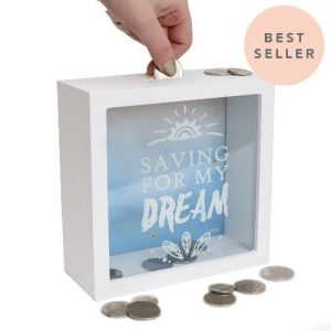Saving For My Dream money box