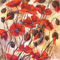 Greeting Card - Rhapsody In Red (FREE DELIVERY)