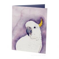 Greeting Card - Curious Cockatoo (FREE DELIVERY)