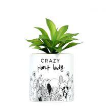 Crazy Plant Lady Pot Plant
